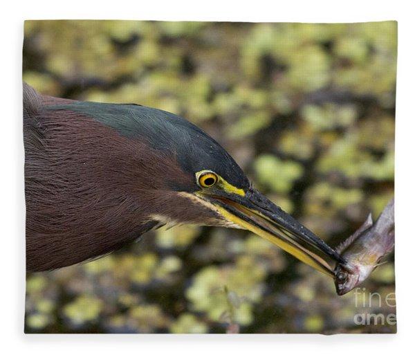 Green Heron Fishing Fleece Blanket