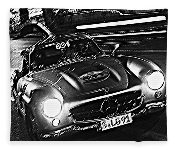 Gullwing In Rome Fleece Blanket