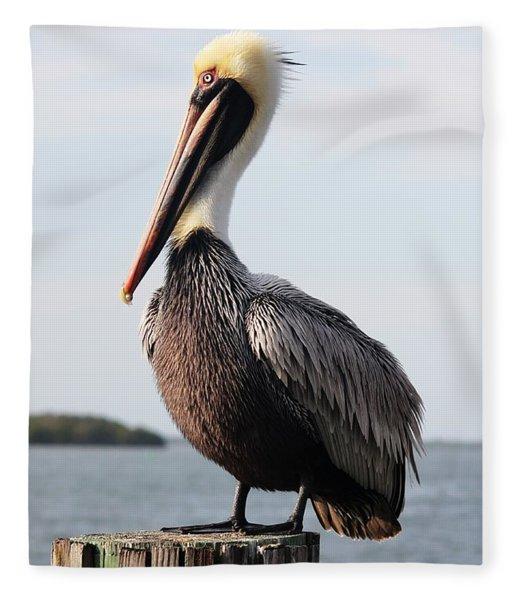Handsome Brown Pelican Fleece Blanket