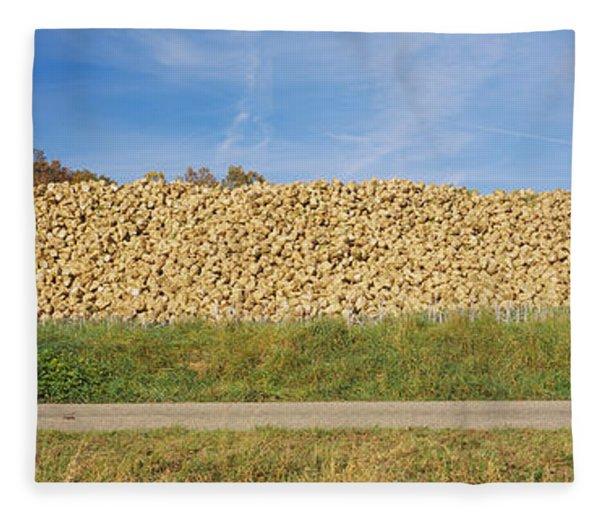 Heap Of Sugar Beets In A Field Fleece Blanket
