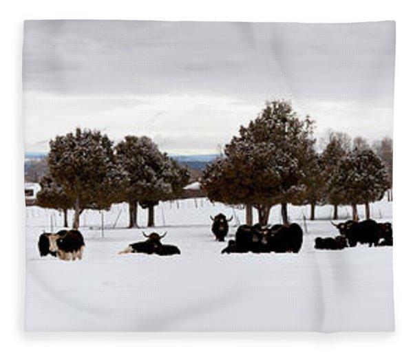 Herd Of Yaks Bos Grunniens On Snow Fleece Blanket