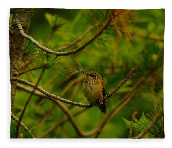 Humming Birds Perched  Fleece Blanket