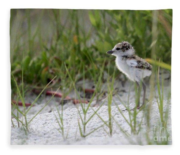 In The Grass - Wilson's Plover Chick Fleece Blanket