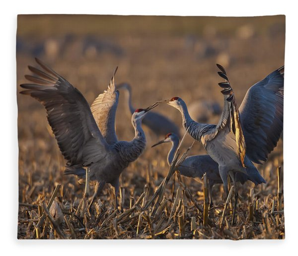 Kissing Sandhills Fleece Blanket