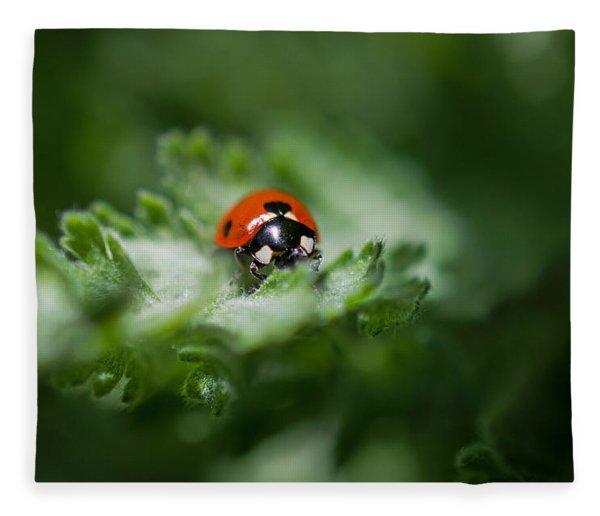 Ladybug On The Move Fleece Blanket