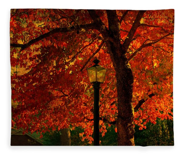 Lantern In Autumn Fleece Blanket