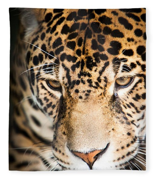 Leopard Resting Fleece Blanket