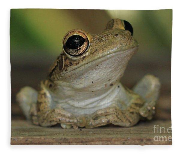 Let's Talk - Cuban Treefrog Fleece Blanket