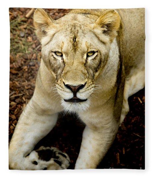 Lion-wildlife Fleece Blanket