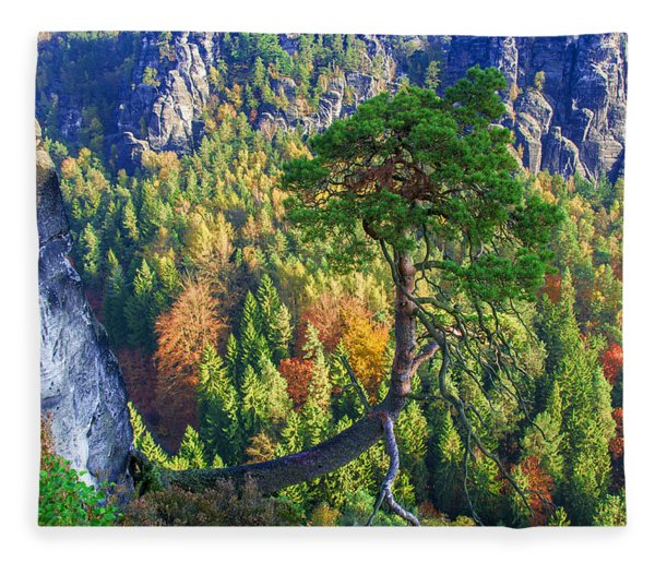 Lonely Tree In The Elbe Sandstone Mountains Fleece Blanket