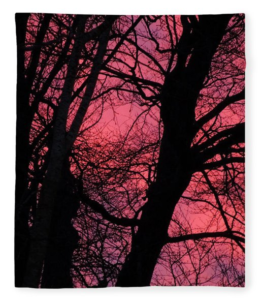 Fleece Blanket featuring the photograph Magic Sunset  by Colette V Hera  Guggenheim