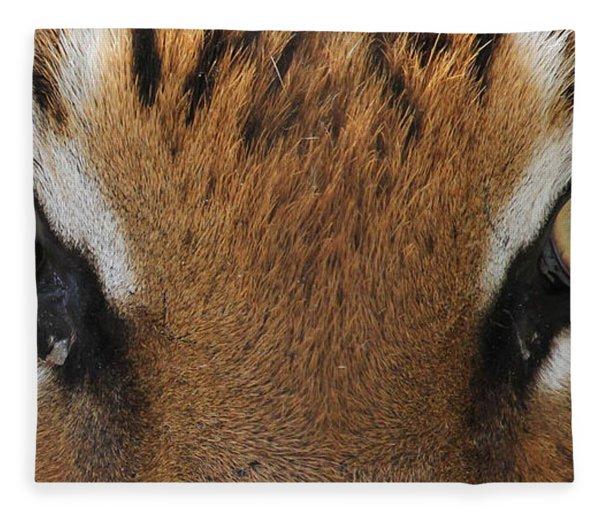 Malayan Tiger Eyes Fleece Blanket