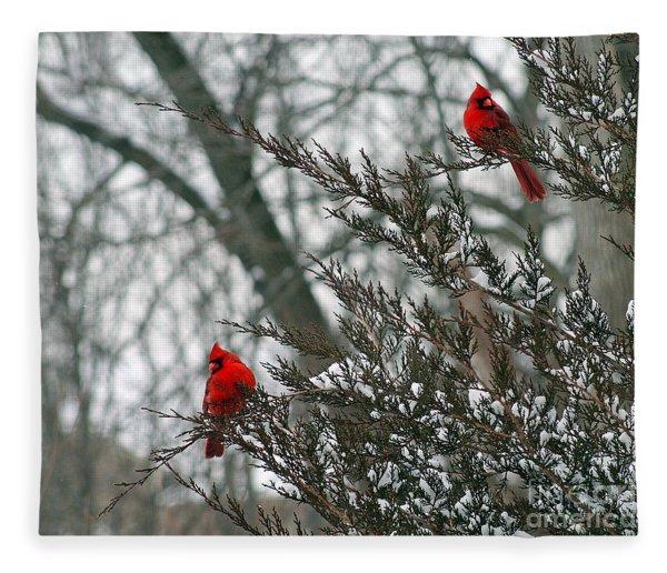 Male Cardinal Pair Fleece Blanket