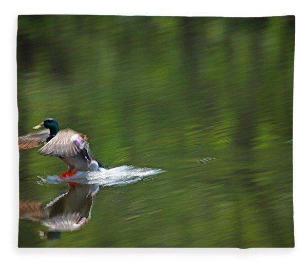 Mallard Splash Down Fleece Blanket