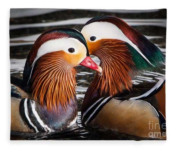 Mandarin Lovers Fleece Blanket