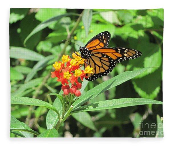 Monarch At Rest Fleece Blanket