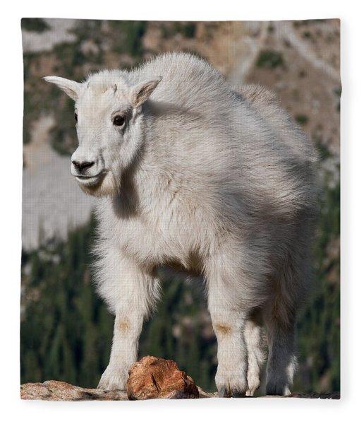 Mountain Goat Kid Standing On A Boulder Fleece Blanket