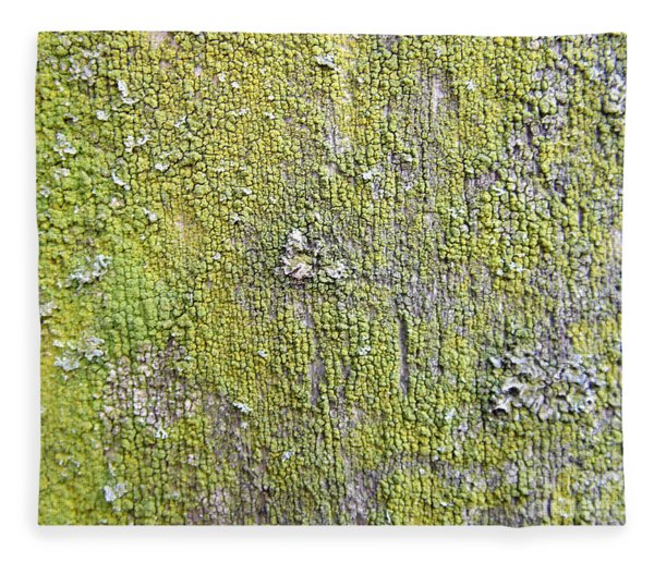 Natural Abstract 1 Old Fence With Moss Fleece Blanket