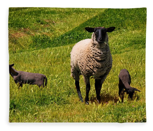 Newborn Twins Fleece Blanket