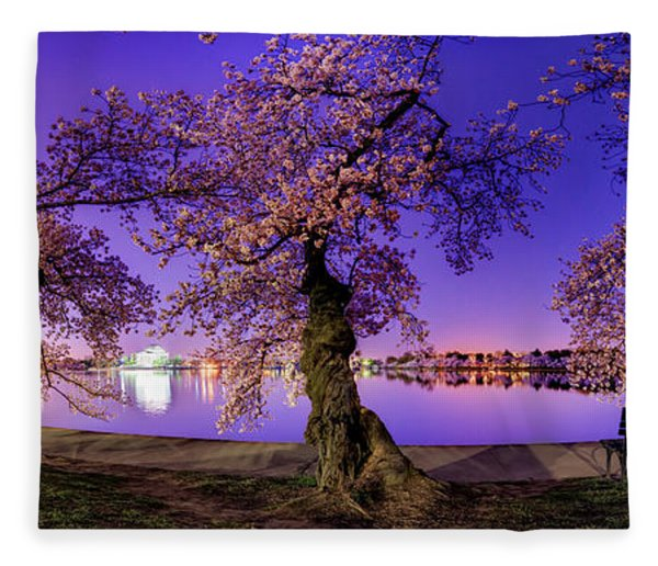 Night Blossoms 2014 Fleece Blanket