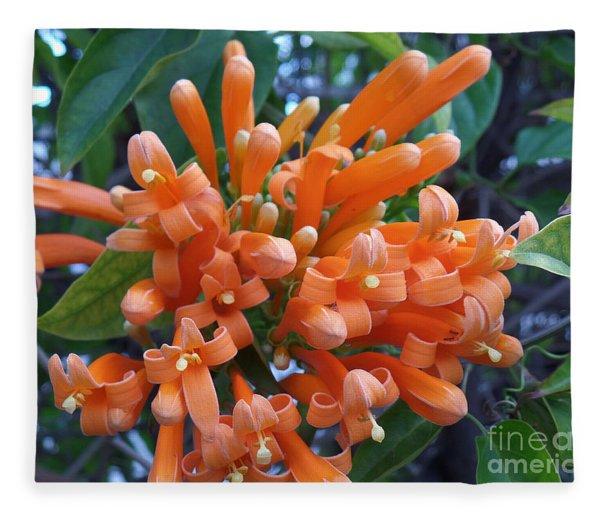 Orange Petals Fleece Blanket