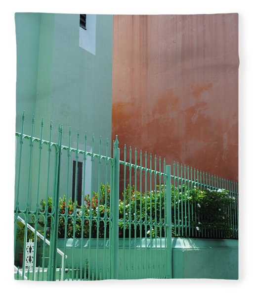 Pale Green With Pink Walls Fleece Blanket
