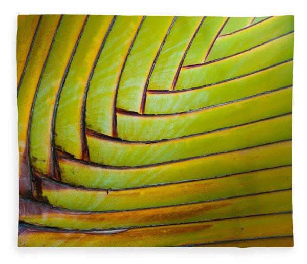 Palm Tree Leafs Fleece Blanket