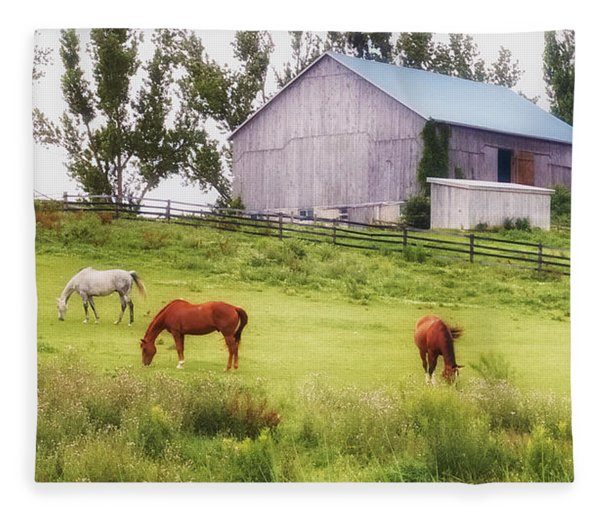 Fleece Blanket featuring the photograph Pasture by Garvin Hunter