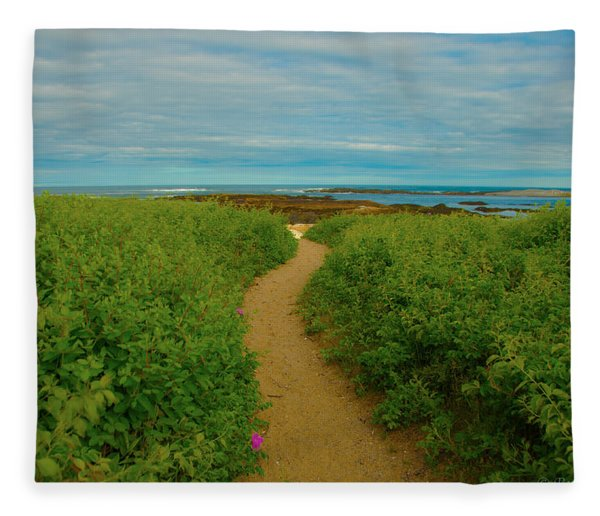 Path To Blue Fleece Blanket