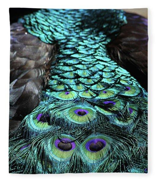 Peacock Trail Fleece Blanket