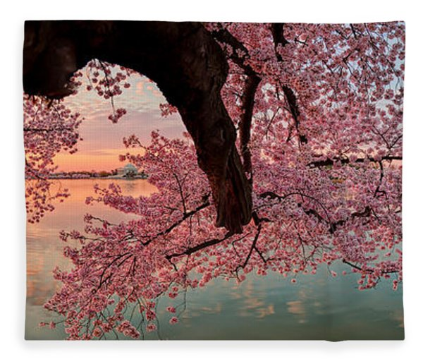 Pink Cherry Blossom Sunrise Fleece Blanket