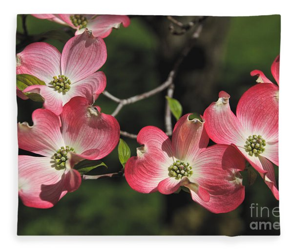 Pink Dogwood Fleece Blanket