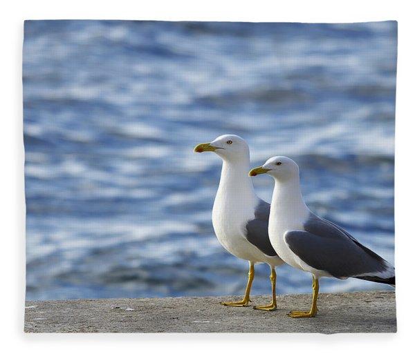 Posing Seagulls Fleece Blanket