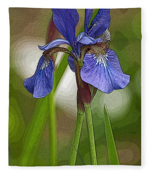 Purple Bearded Iris Watercolor With Pen Fleece Blanket