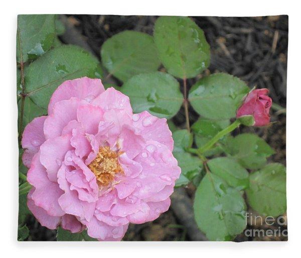 Rain Kissed Rose Fleece Blanket