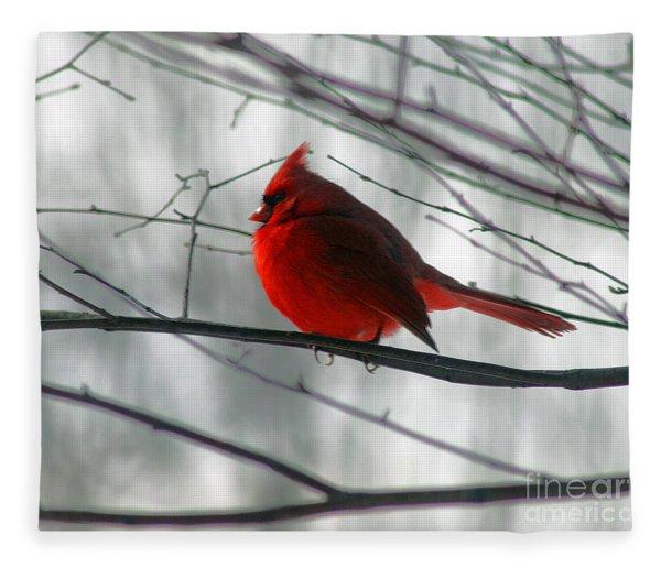 Red Cardinal On Winter Branch  Fleece Blanket