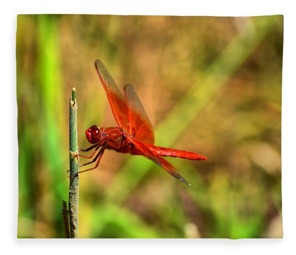 Red Dragon Dreams Fleece Blanket
