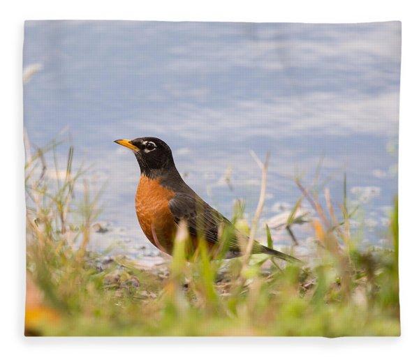 Robin Viewing Surroundings Fleece Blanket