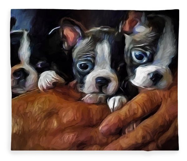 Safe In The Arms Of Love - Puppy Art Fleece Blanket