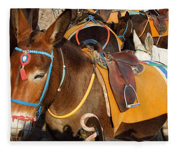 Fleece Blanket featuring the photograph Santorini Donkeys Ready For Work by Colette V Hera  Guggenheim