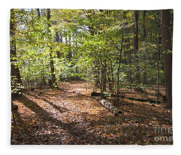 Scared Grove 2 Fleece Blanket