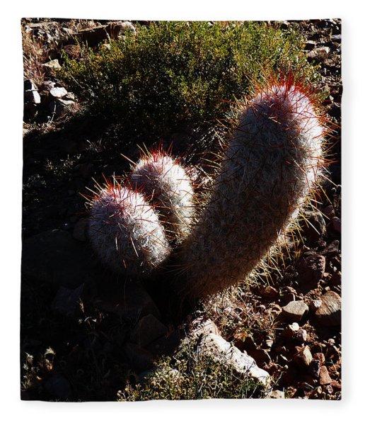 Senor Cacti Fleece Blanket