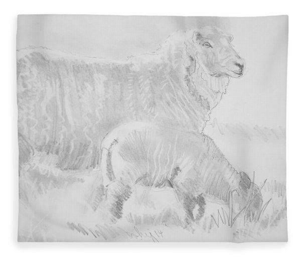 Sheep Lamb Pencil Drawing Fleece Blanket