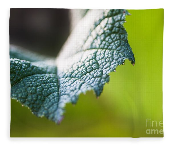 Slice Of Leaf Fleece Blanket