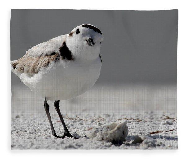 Snowy Plover Fleece Blanket