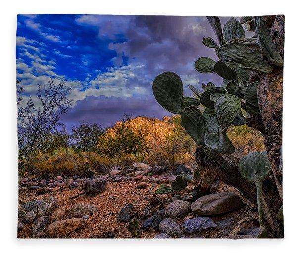 Sonoran Desert 54 Fleece Blanket