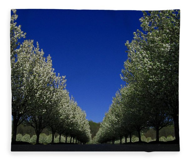 Fleece Blanket featuring the photograph Spring Tunnel by Raymond Salani III