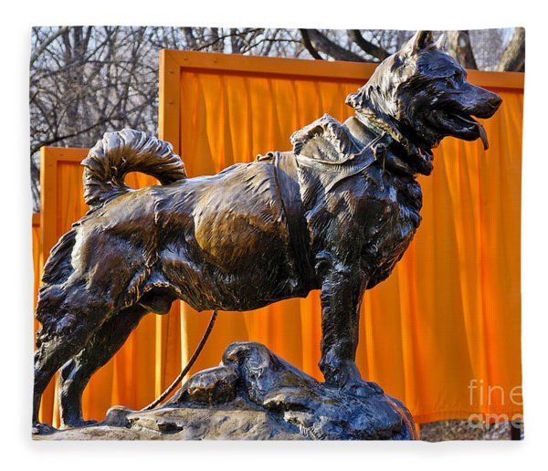Statue Of Balto In Nyc Central Park Fleece Blanket