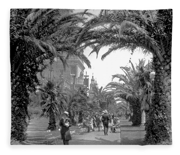 Avenue Of The Palms, San Francisco Fleece Blanket