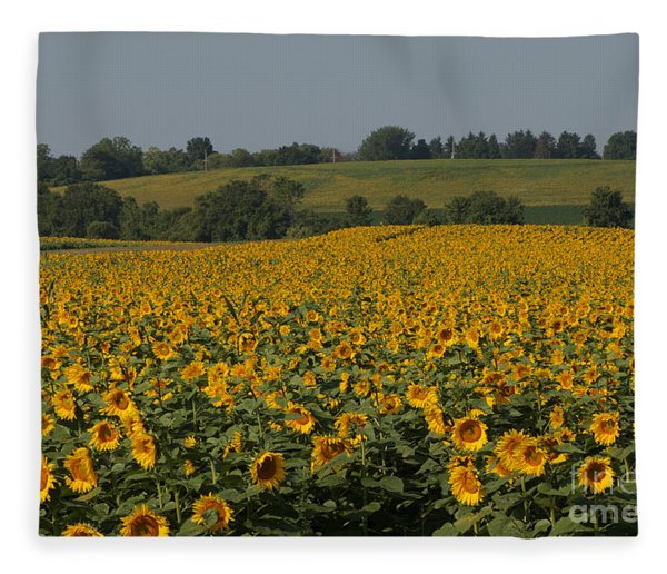 Sun Flower Sea Fleece Blanket